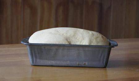 risen bread