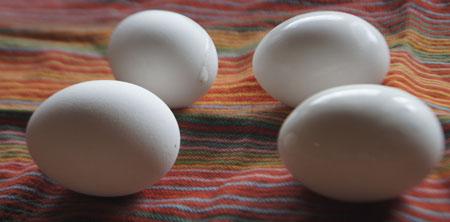 egg leaking