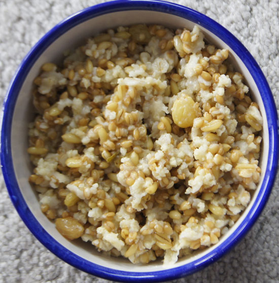grains hot cereal